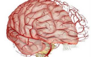 Народные средства для лечения дисциркуляторной энцефалопатии