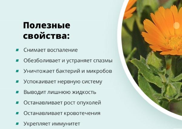 dermatit-lechenie-7.jpg