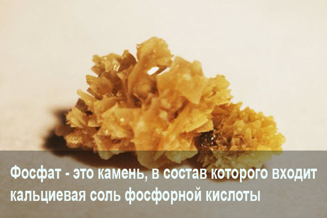Fosfaty-v-pochkah.jpg