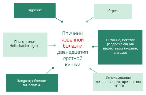 Prichinyi-vozniknoveniya-yazvennoy-bolezni-dvenadtsatiperstnoy-kishki-600x391.png